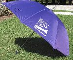 Shelter yourself from the rain, snow, or sun with a stylish new CDF umbrella!