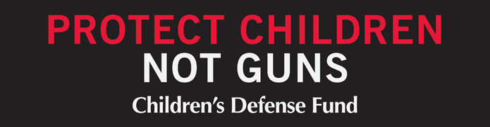 Bumper-Sticker_Protect.png